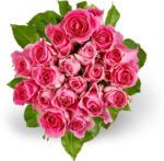 Migros Genève Mini-roses M-Classic, Fairtrade
