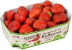 BILLA PLUS Da komm ich her! Erdbeeren aus Österreich