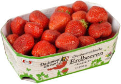 Da komm ich her! Erdbeeren aus Österreich