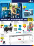 HOFER HOFER: Flugblatt - bis 19.06.2021