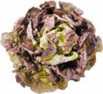Volg Salade pommée rouge