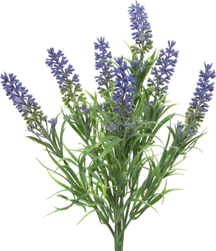Dekorieren & Einrichten Lavendelbündel
