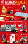 ZOO & Co. TREDE & VON PEIN ZOO & Co: Monatsknaller - bis 04.07.2021