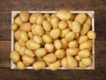 Lidl Pommes de terre bio