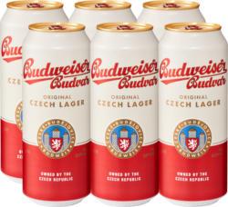 Bière lager Original Budweiser, 6 x 50 cl