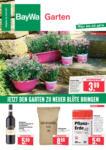 BayWa Bau- & Gartenmärkte Wochenangebote - bis 10.07.2021