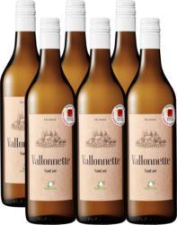 Vallonnette AOC La Côte Bio Suisse , 2020, Vaud, Svizzera, 6 x 70 cl
