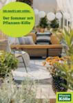 Pflanzen-Kölle Gartencenter Der Sommer mit Pflanzen Kölle - bis 13.08.2021
