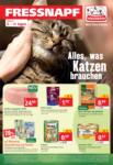 Fressnapf Alles, was Katzen brauchen - bis 14.08.2021