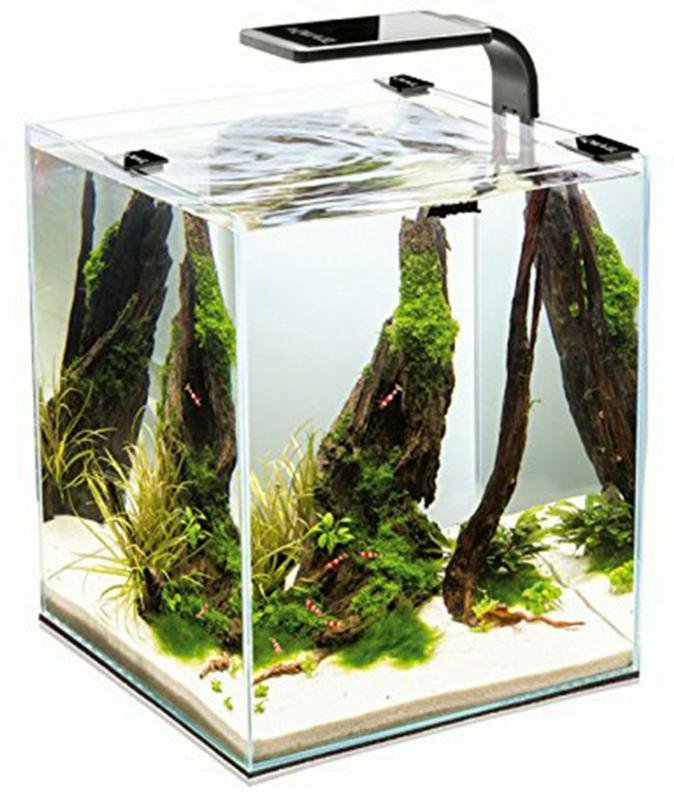 Nuber Nano Aquarium Shrimp 30 weiss