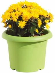 Pflanztopf Mediterraneo grün 30 cm