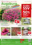 Gartencenter Augsburg Wochenangebote - bis 22.08.2021