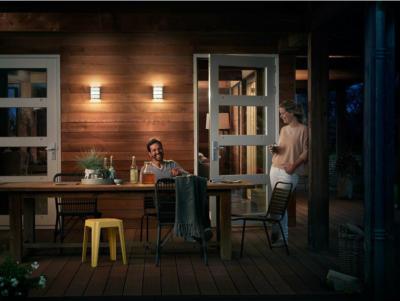 Philips LED-Außenwandleuchte Python Edelstahl