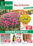 BayWa Bau- & Gartenmärkte Wochenangebote - bis 04.09.2021