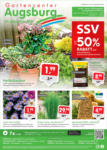 Gartencenter Augsburg Wochenangebote - bis 05.09.2021