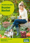Pflanzen-Kölle Gartencenter Bunter Herbst - bis 06.10.2021