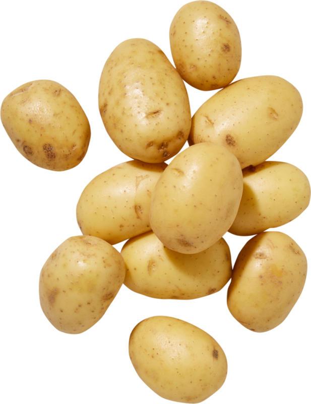 Pommes de terre IP-SUISSE, fermes à la cuisson, 2,5 kg
