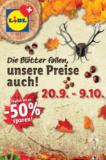 Lidl Herbstkalender