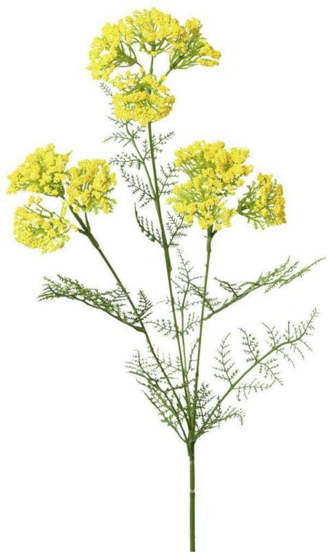 Kunstblume Achillea