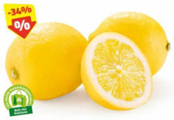 HOFER MARKTPLATZ Zitronen, 500 g