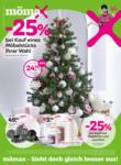 Mömax Mömax Angebote - bis 21.11.2021