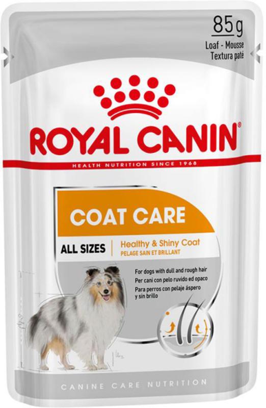 Royal Canin Chien Adult Coat Care nourriture humide pour un pelage brillant 12x85g