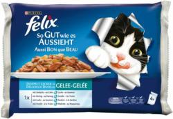 Felix Aussi Bon que Beau Délicieux Duos 10x4x100g