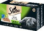 Sheba Nassfutter für Katzen Sauce Lover Feine Vielfalt 8x85g