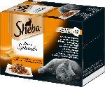 Sheba Nassfutter für Katzen, Sauce Spéciale, Herzhafte Komposition mit Gemüse, 12x85g