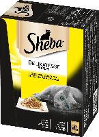 Sheba Nassfutter für Katzen, Delikatesse in Gelee, Geflügel Variation, 12x85g
