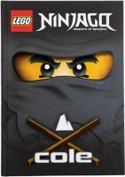 LEGO Ninjago Buch mit Quiz