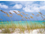 Komar Papier-Fototapete Ocean Breeze, 8-teilig, 368x254cm