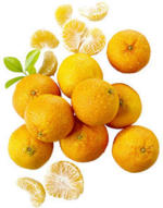 """Spanien Mandarinen """"Nadorcott""""  Kennzeichnung siehe Etikett, jedes 750-g-Netz"""