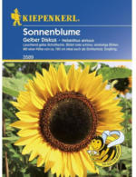 Kiepenkerl Sonnenblume Gelber Diskus Profi-Line