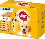 Pedigree Nassfutter für Hunde, Junior Auswahl in Gelee, Multipack, 12x100g