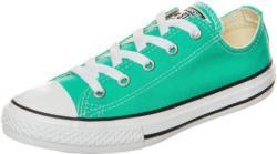 Converse Sneaker »Chuck Taylor All Star Fresh Colors«