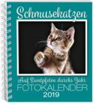 Weltbild Schmusekatzen Fotokalender 2019 - bis 31.12.2018