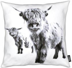 Dekokissen, »Highland Cows«, Juniqe