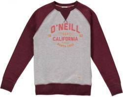 O'Neill Sweat »Santa Cruz«