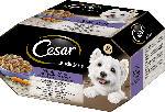 dm-drogerie markt Cesar Nassfutter für Hunde, Landküche Vielfalt in Sauce, 8x150g