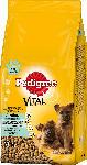 Pedigree Trockenfutter für Hunde, Junior Maxi mit Huhn und Reis, für große Hunde