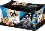 dm-drogerie markt Sheba Nassfutter für Katzen, Feine Filets, Feine Vielfalt, Multipack, 6x80g