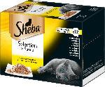 dm-drogerie markt Sheba Nassfutter für Katzen, Selection in Sauce, Geflügel Variation, Multipack, 12x85g