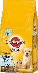 dm-drogerie markt Pedigree Trockenfutter für Hunde, Junior Medium mit Huhn und Reis