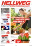 HELLWEG - Ried im Innkreis Hellweg Flugblatt - 25.5. bis 1.6. - bis 01.06.2016