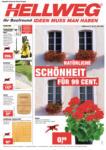 HELLWEG - Ried im Innkreis Hellweg Flugblatt - 21.4. bis 27.4. - bis 27.04.2016