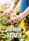 Pflanzenpflege und -anzucht