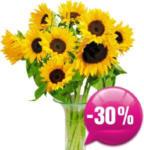 Blumen B&B Sonnenblumen - bis 05.08.2018