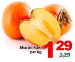 ETSAN Sharon Kaki - bis 08.11.2016