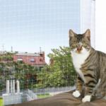 Cats & Pets TRIXIE Schutznetz - bis 22.08.2015
